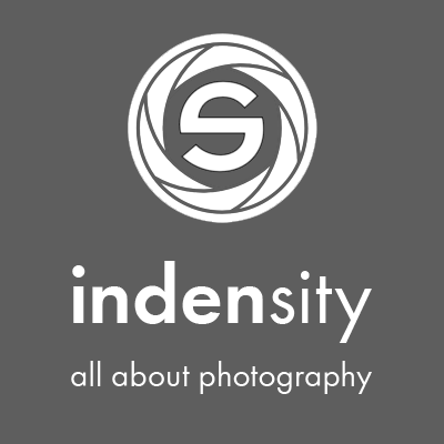 indensity Logo